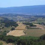 Conca de Barberà from the air